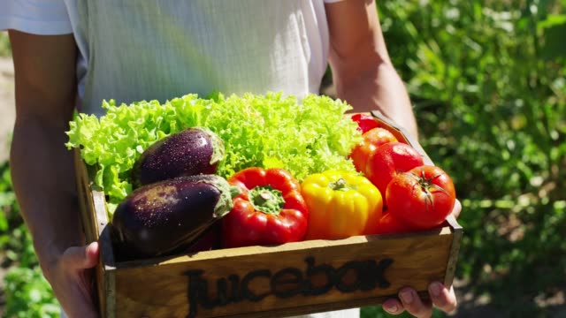 only the freshest and juiciest produce here - vegan food stock videos & royalty-free footage