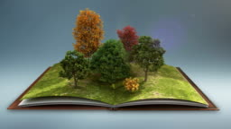 Open book makes Forest tree, nature gray background.