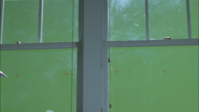 stockvideo's en b-roll-footage met pan open french windows - tuindeur