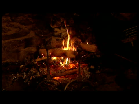 Open log fire burning in grate