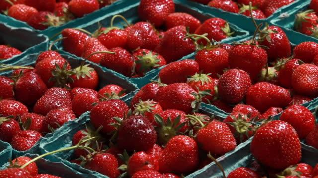 vidéos et rushes de marché ouvert-fraises dans les récipients - fraise