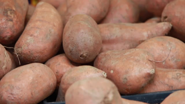 open market - sweet potatoes on display - sweet potato stock videos & royalty-free footage