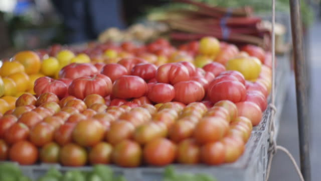 open market - tomatoes for sale - market retail space stock videos & royalty-free footage