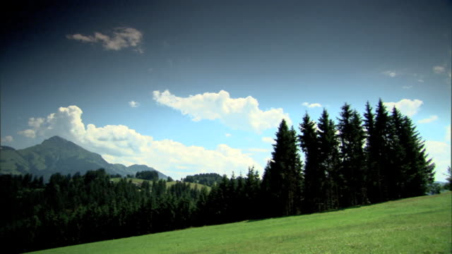 open meadow lined w/ evergreen trees to chalet home austrian alps mountains bg excursion sightseeing holiday vacation - chalet stock videos & royalty-free footage