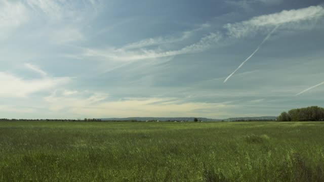 open pasture with big sky - open field stock videos & royalty-free footage