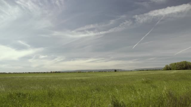 open pasture with big sky - meadow stock videos & royalty-free footage