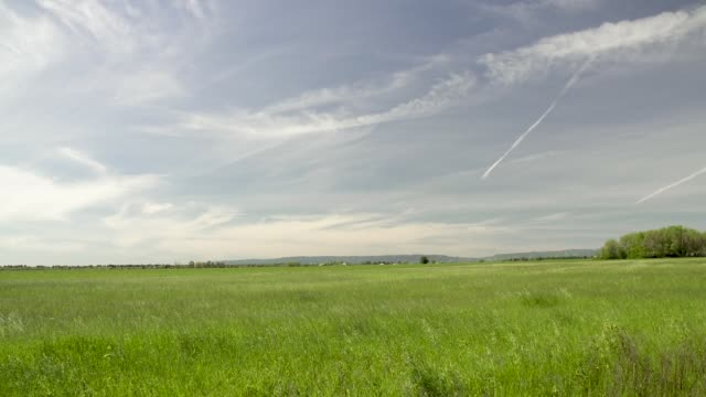 open pasture with big sky - environmental conservation stock videos & royalty-free footage