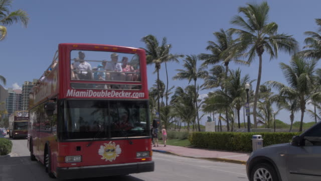 open top buses passing on ocean drive, miami beach, south beach, miami, florida, united states of america, north america - autobus a due piani video stock e b–roll