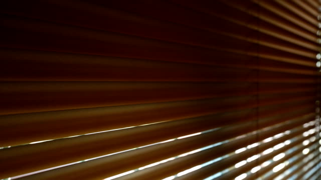 Open window blinds interior