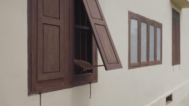 Holzfenster zu öffnen.