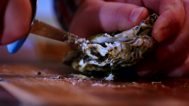 opening fresh oysters - pearl stock videos and b-roll footage
