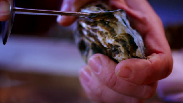 Opening Fresh Oysters