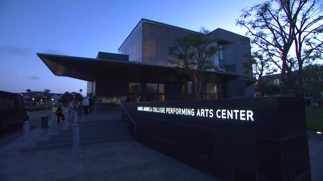 opening night of anna deavere smith's 'let me down easy' at the broad stage at the opening night of anna deavere smith's 'let me down easy' at the... - anna deavere smith video stock e b–roll
