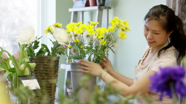 opening the flower shop - flower shop stock videos and b-roll footage