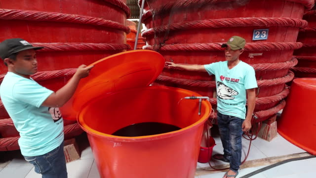 operations at the red boat fish sauce factory including sourcing of anchovies from the boats operations at the fish sauce factory and cooking with... - anchovy stock videos & royalty-free footage