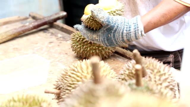 vídeos y material grabado en eventos de stock de opne de duriano para el cliente - tanga