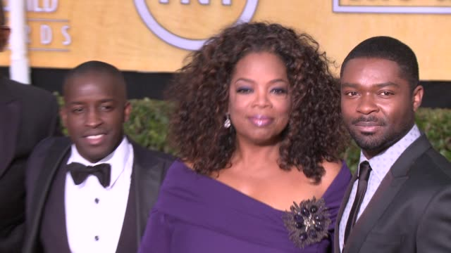 oprah winfrey at 20th annual screen actors guild awards arrivals at the shrine auditorium on in los angeles california - シュラインオーディトリアム点の映像素材/bロール
