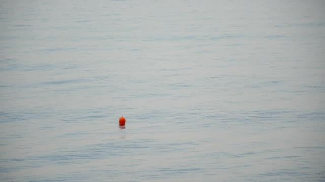 vídeos de stock, filmes e b-roll de bóia de laranja sobre a superfície do mar - boia equipamento marítimo de segurança
