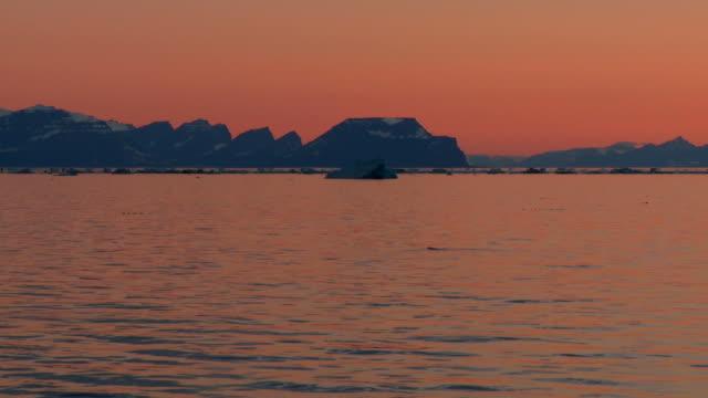 orange landscape at midnight sun in greenland - greenland stock videos & royalty-free footage