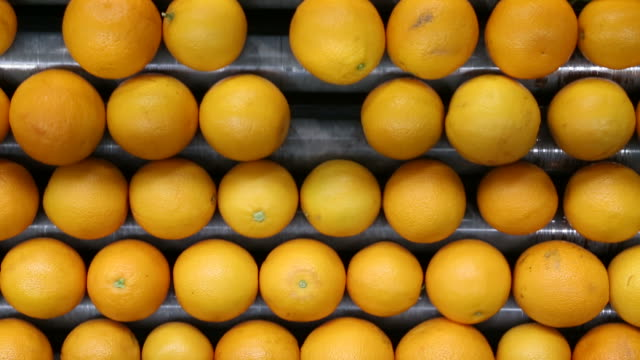 orange processing - food processing plant stock videos & royalty-free footage