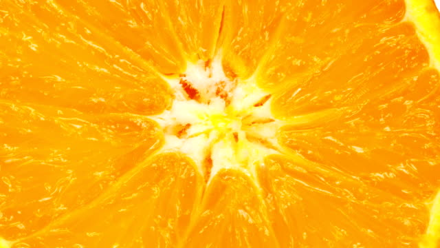 orange slice close up - citrus fruit stock videos and b-roll footage