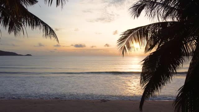 orange solnedgång på kokospalmerna stranden. palmer på havsstranden landskap. vågorna slog på sanden på en sandstrand. - tropiskt träd bildbanksvideor och videomaterial från bakom kulisserna