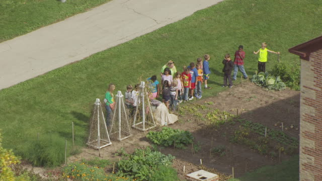 vídeos de stock e filmes b-roll de ws aerial orbit around for woman in period costume demonstrating gardening techniques to school children at the belgian farmhouse building at heritage hill state historical park / green bay, wisconsin, united states  - só adultos