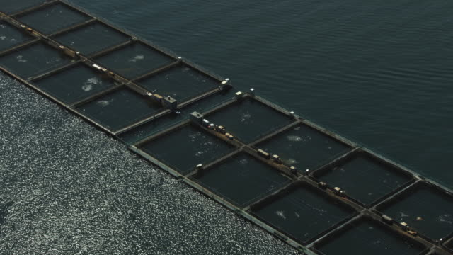 Orbital shot of fish pens at a salmon farm