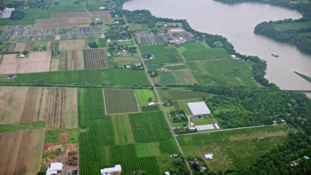 aerial orchards in vineland, ontario, kanada - ontario kanada stock-videos und b-roll-filmmaterial