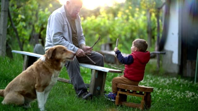 ordinary day in the yard - grandchild stock videos & royalty-free footage