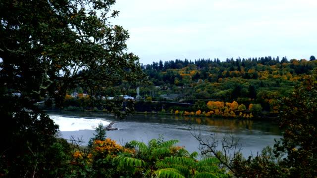 oregon city, or - fiume willamette video stock e b–roll