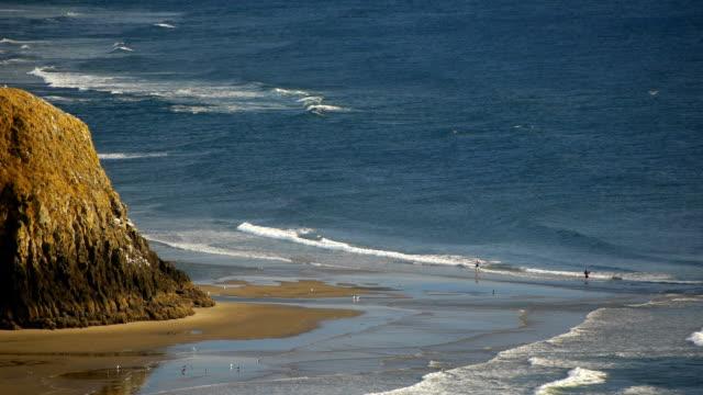 vidéos et rushes de oregon coast de cannon beach - côte de l'oregon