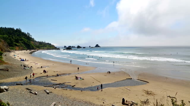 oregon coast - oregon coast stock videos & royalty-free footage