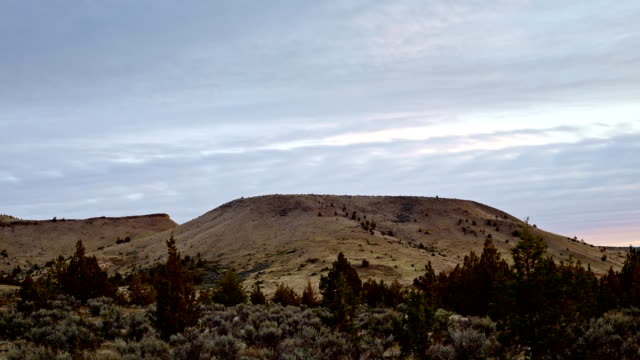 Oregon mesa with vegetation in the high desert with great basin sage brush and juniper trees