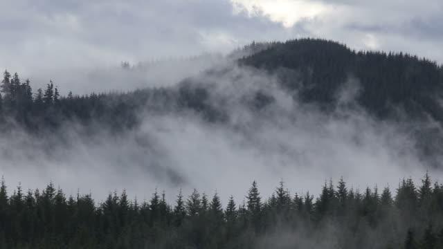 オレゴンミスト - オレゴン州点の映像素材/bロール