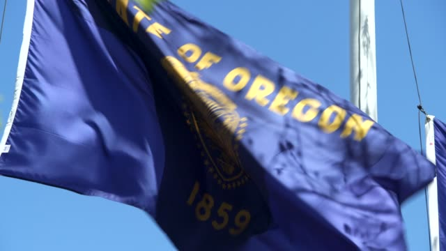 oregon state flag waving in the breeze - oregon us state stock videos & royalty-free footage