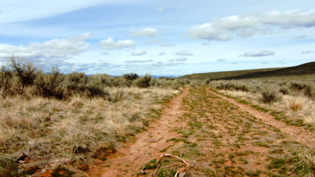 oregon trail covered wagon ruts - tire track stock videos & royalty-free footage