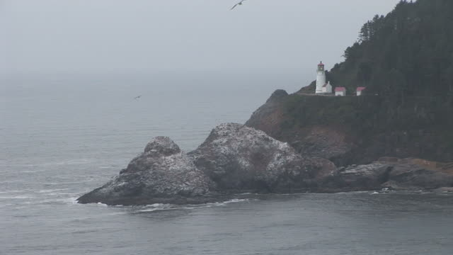 oregonview of a lighthouse in oregon pacific northwest united states - heceta head stock videos & royalty-free footage