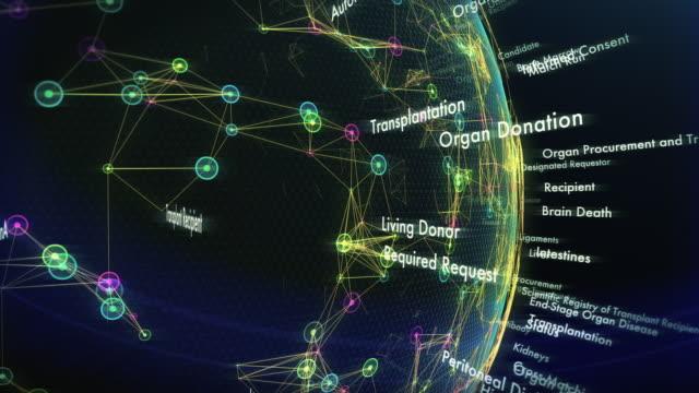 organ donation terms - rene umano video stock e b–roll