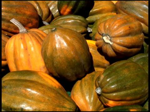 Organic Acorn Squash / Marrow