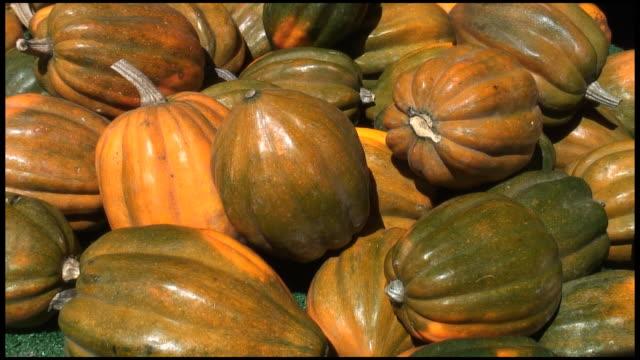 (HD1080i) Organic Acorn Squash