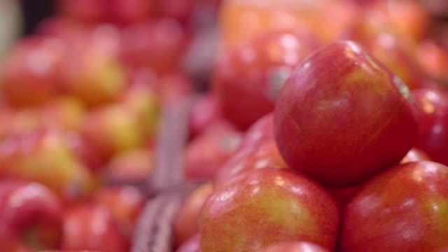 vídeos de stock e filmes b-roll de organic apple - fruit - maçã