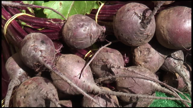 HD: Organic Beets, Beetroot, Swiss Chard