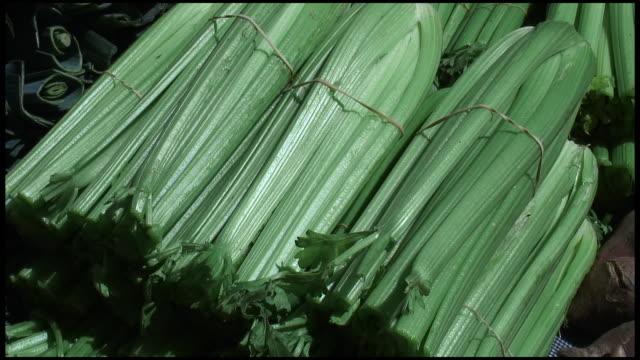 (hd1080i) organic celery - celery stock videos and b-roll footage
