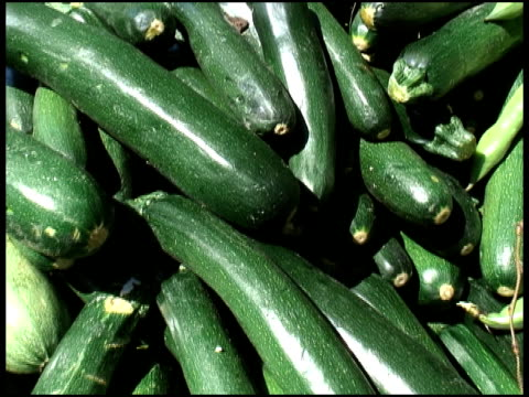 organic courgette, zucchini, italian or marrow squash - courgette stock videos and b-roll footage