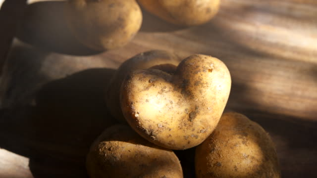Organic earthy heart shaped potatoes on rustic wooden kitchen chopping board in dappled sunlight