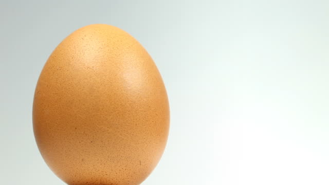 organic egg - close up - single object stock videos & royalty-free footage