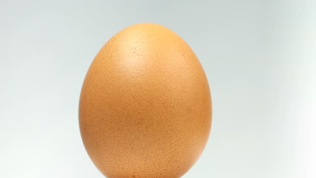 organic egg - close up - egg stock videos & royalty-free footage