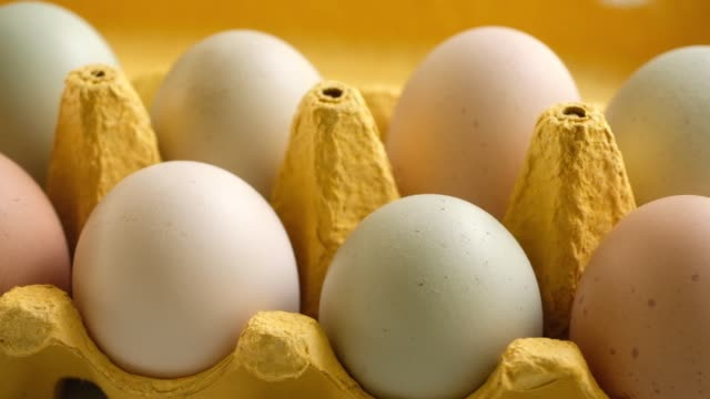 organic eggs in carton - egg stock videos & royalty-free footage