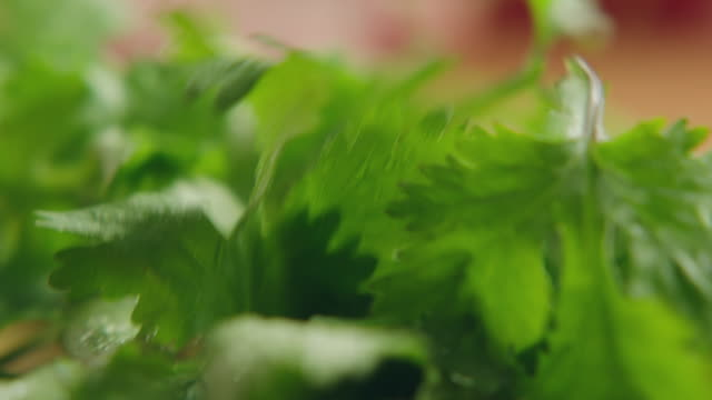 ecu organic green cilantro on kitchen chopping block, chopped with steel knife, then cuttings pushed aside with knife / los angeles, california united states - kitchen knife stock videos & royalty-free footage